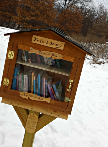 Here's a Little Free Library at the Lake Elmo Park Reserve, which is 10 minutes from my house. I love that this one was an Eagle Scout project.