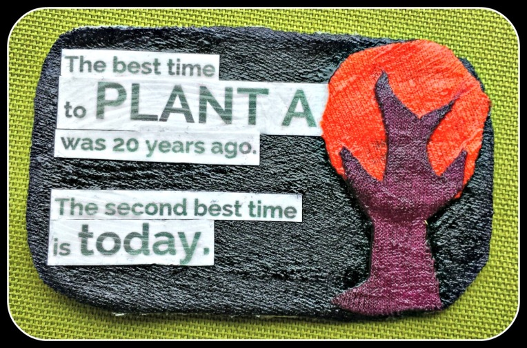 time_to_plant