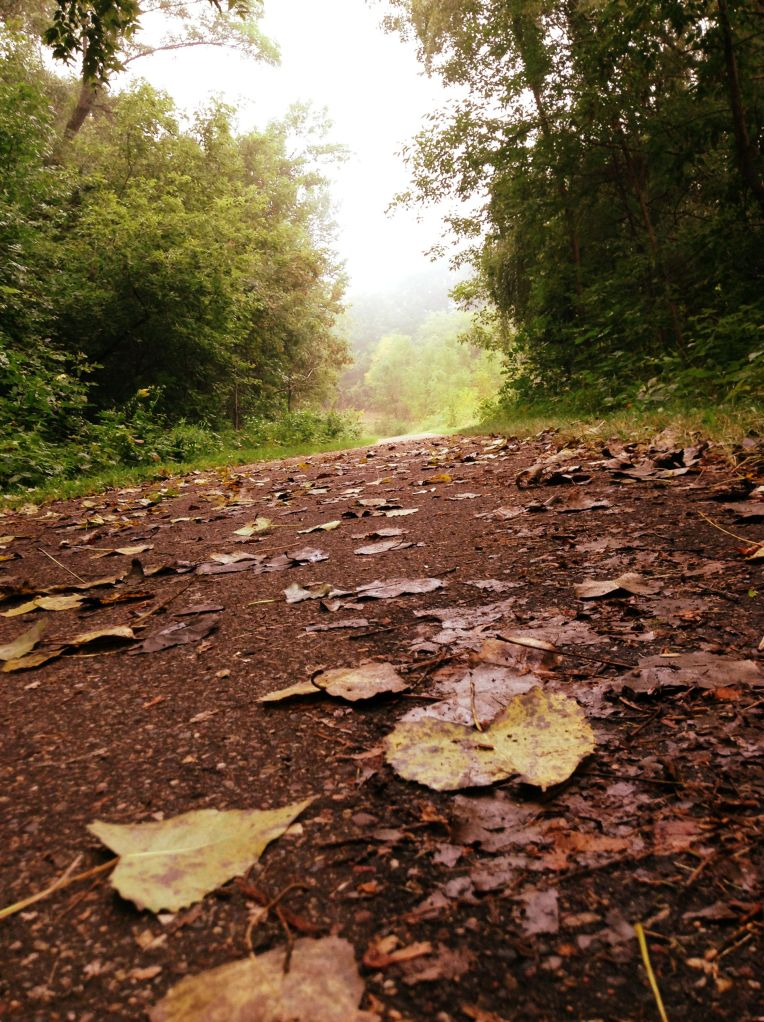 leaves_in_path