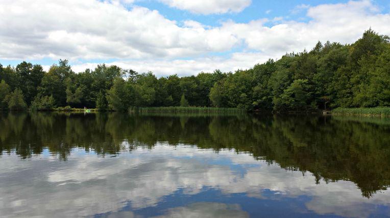 mirrored_lake