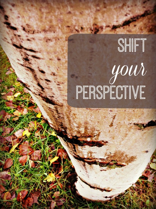 shift_your_perspective