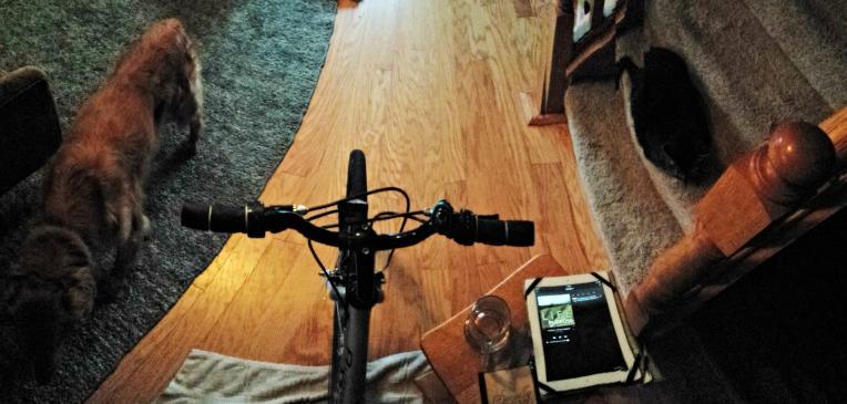 bike_panorama